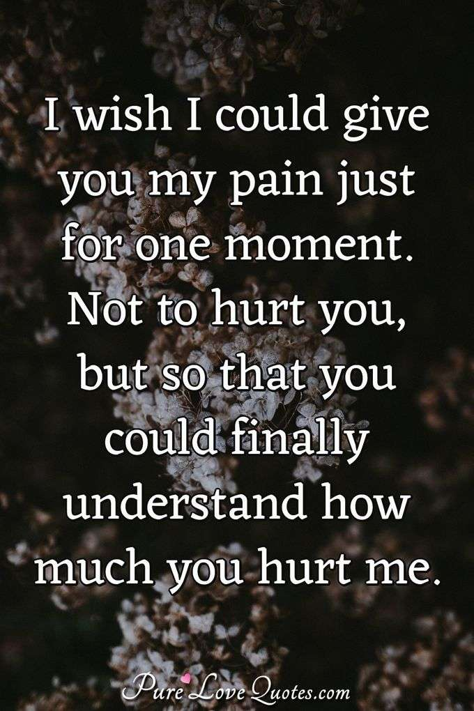 I wish I could give you my pain just for one moment. Not to hurt you, but so that you could finally understand how much you hurt me. - Anonymous