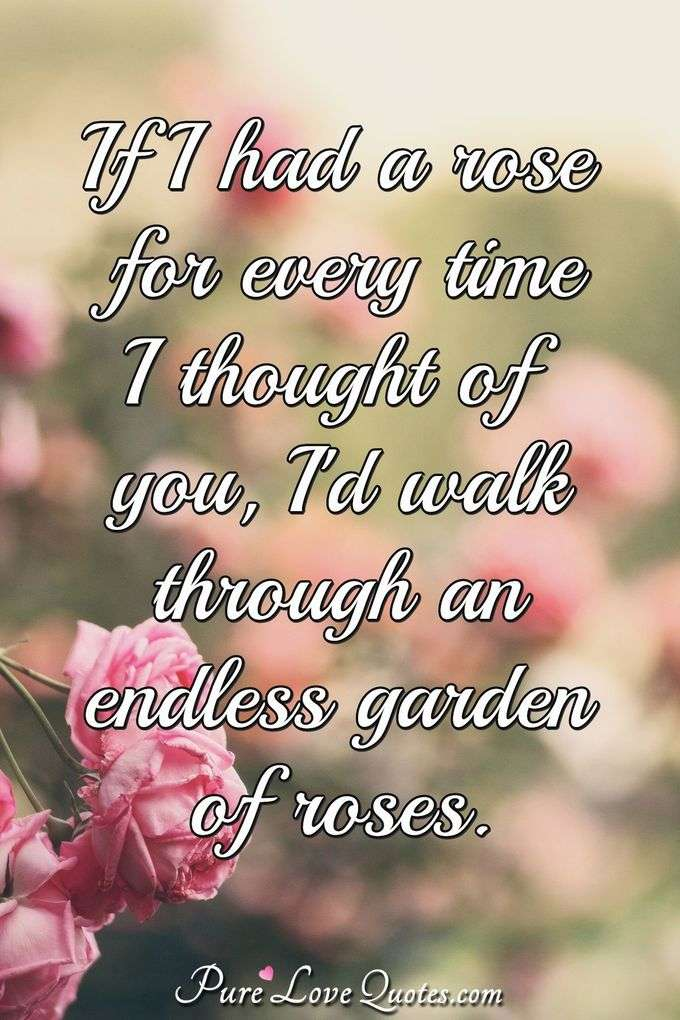If I had a rose for every time I thought of you, I'd walk through an endless garden of roses.