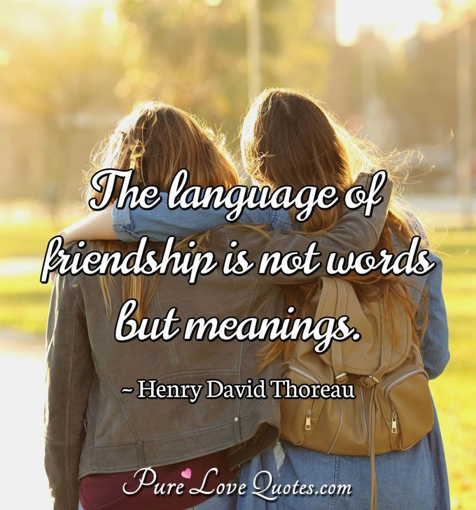 The Language Of Friendship Is Not Words But Meanings Purelovequotes