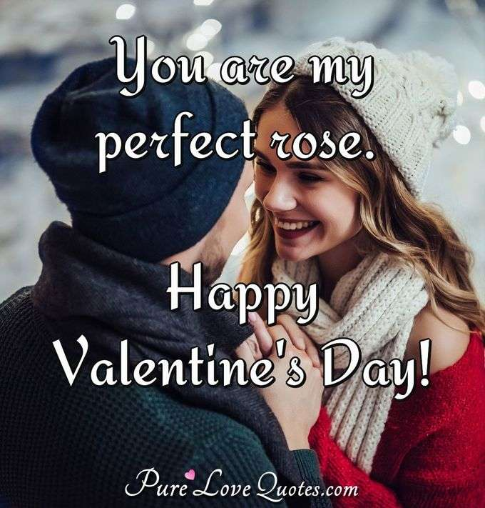 You are my perfect rose. Happy Valentine's Day!