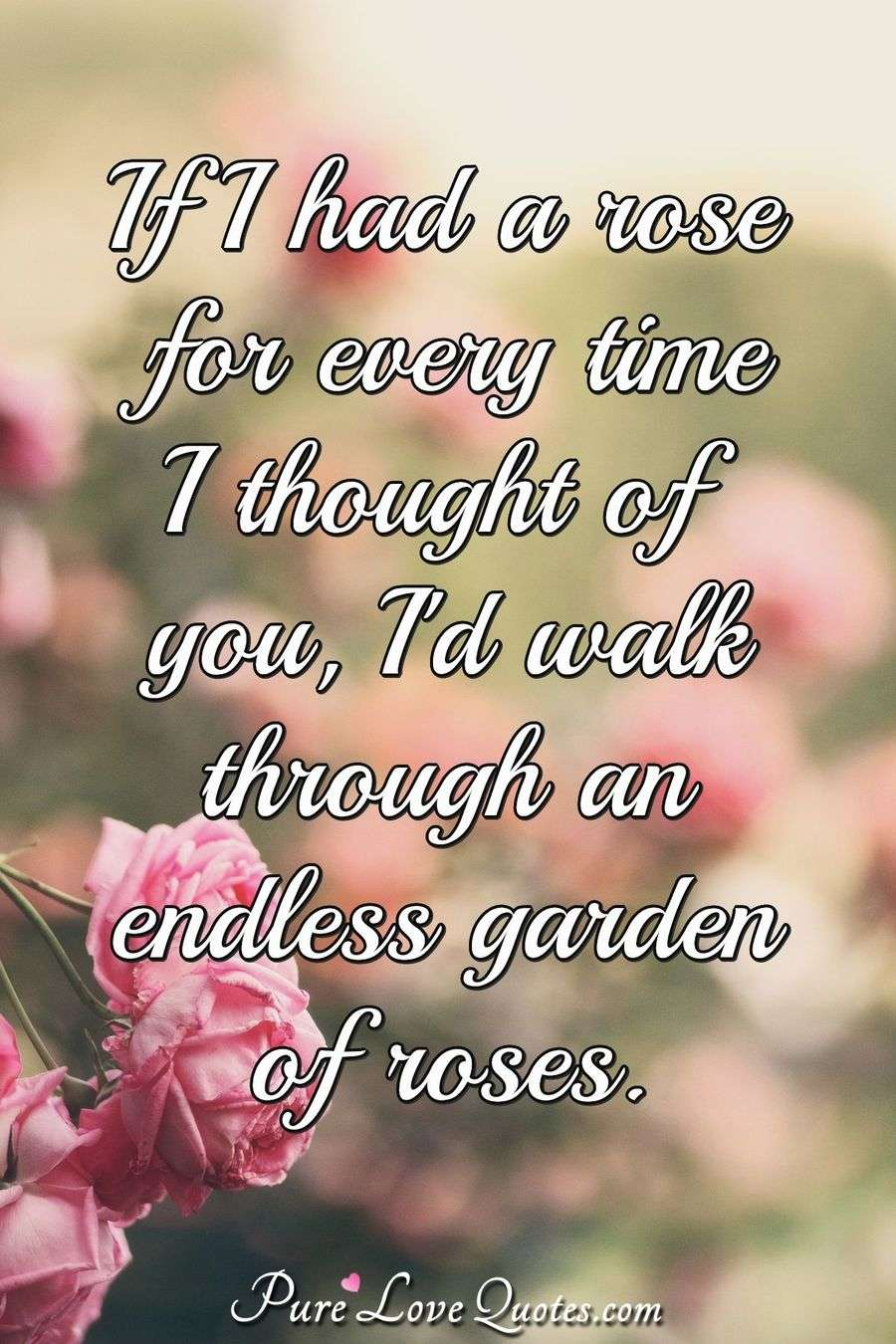 If I had a rose for every time I thought of you, I'd walk through an endless garden of roses. - Anonymous
