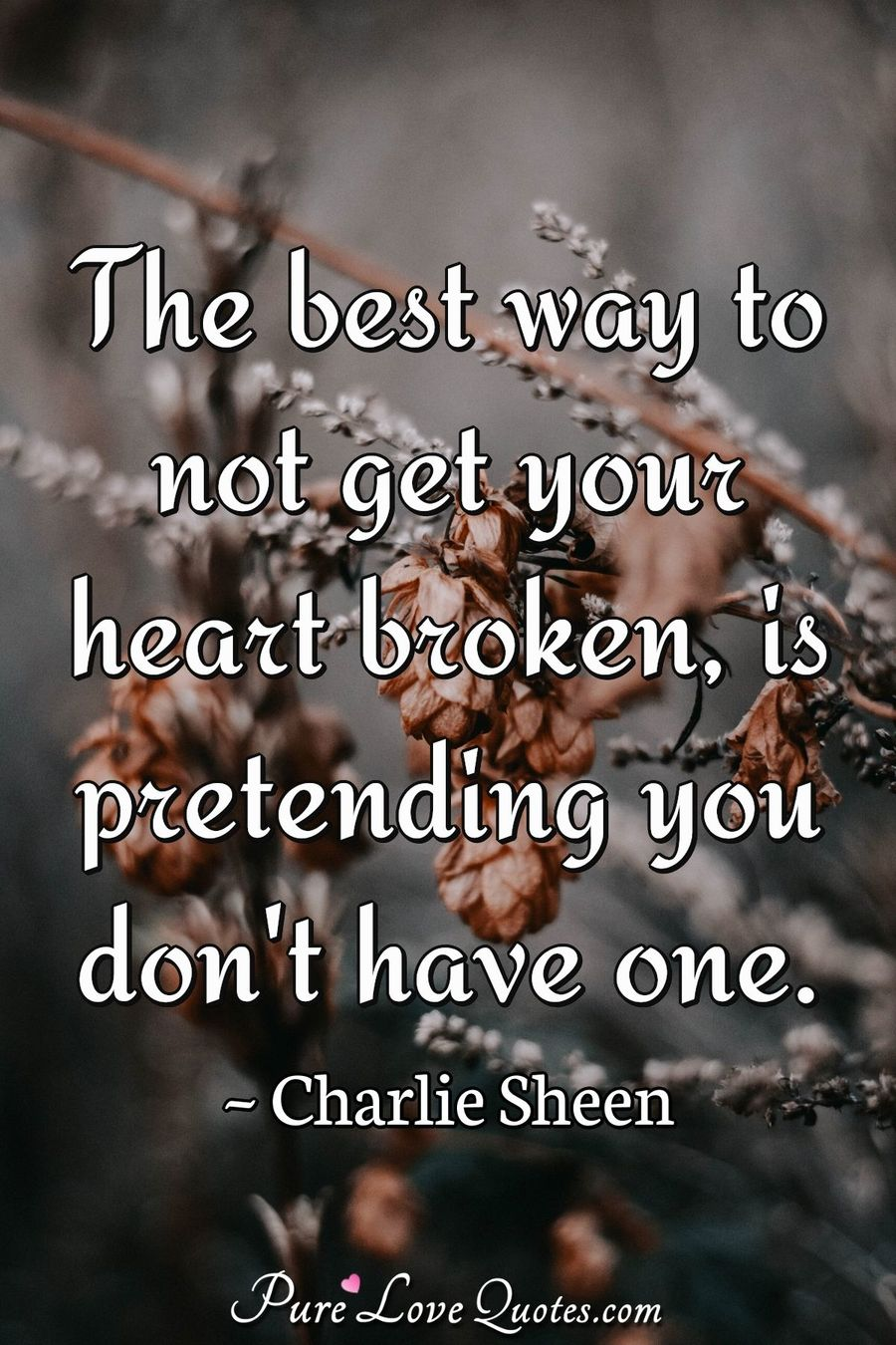 The best way to not get your heart broken, is pretending you don't have one. - Charlie Sheen
