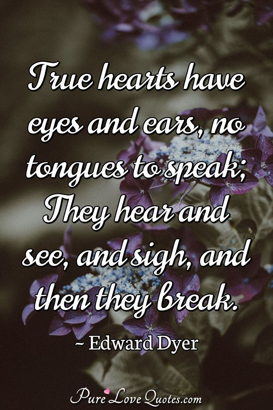 True hearts have eyes and ears, no tongues to speak; They hear and see, and sigh, and then they break. - Edward Dyer