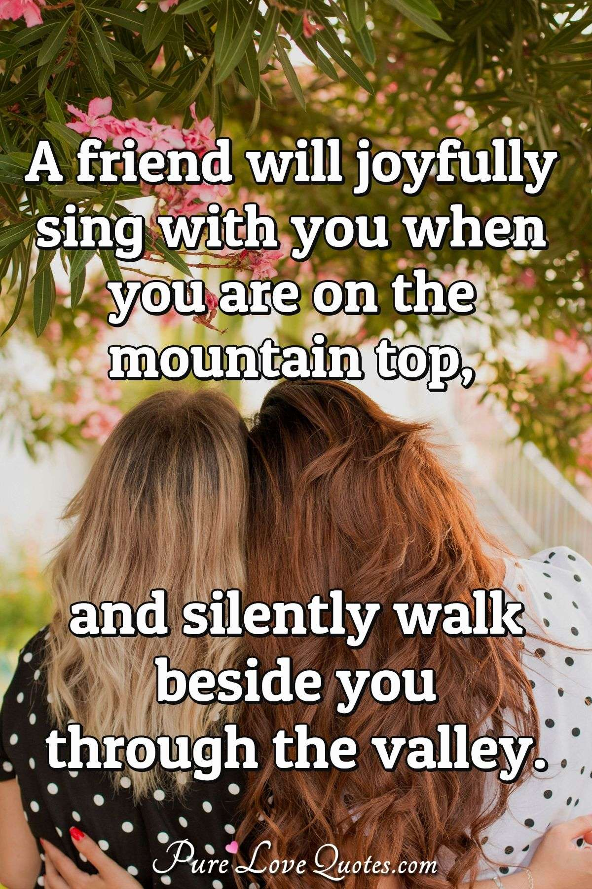 A friend will joyfully sing with you when you are on the mountain top, and silently walk beside you through the valley. - Anonymous