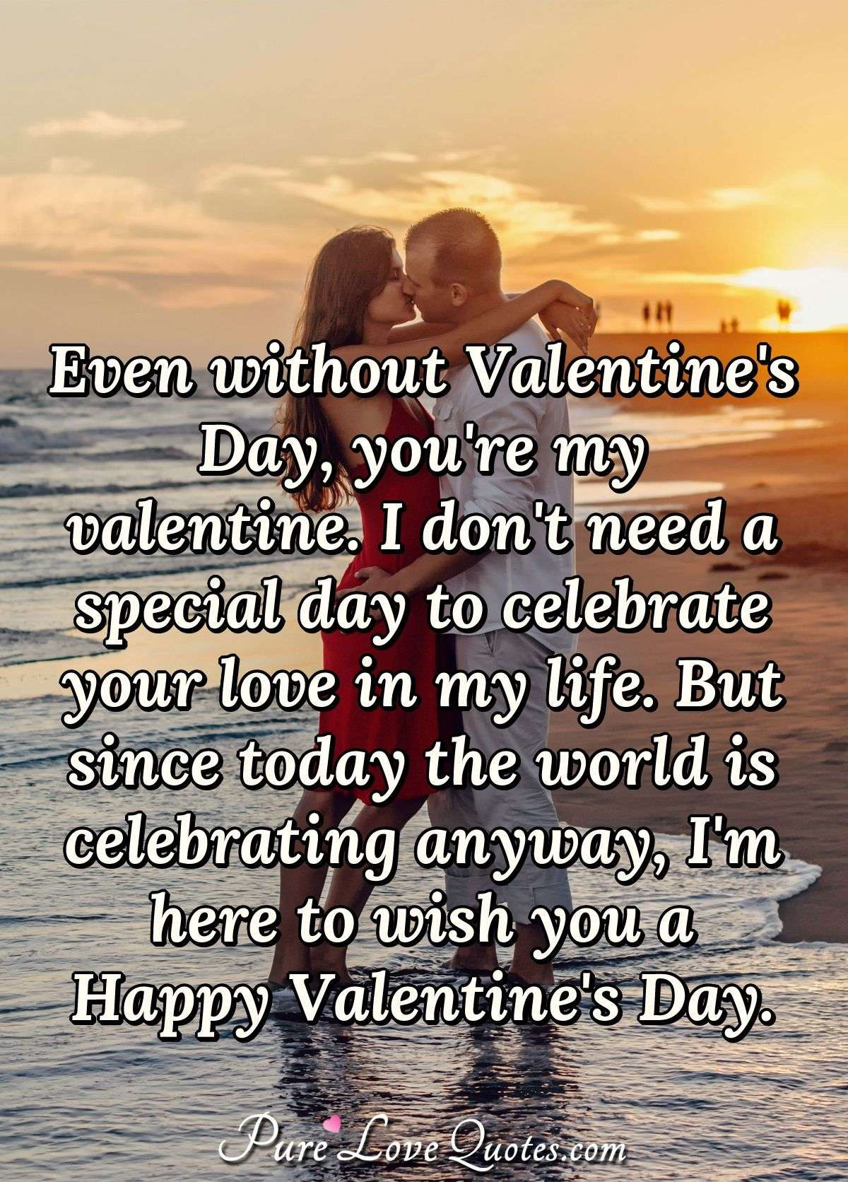Even without Valentine's Day, you're my valentine. I don't need a special day to celebrate your love in my life. But since today the world is celebrating anyway, I'm here to wish you a Happy Valentine's Day. - Anonymous