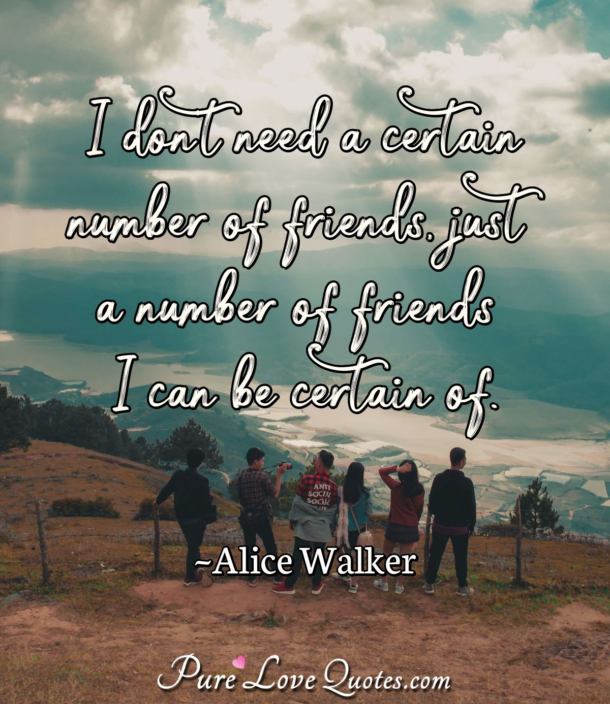 I don't need a certain number of friends, just a number of friends I can be certain of. - Alice Walker