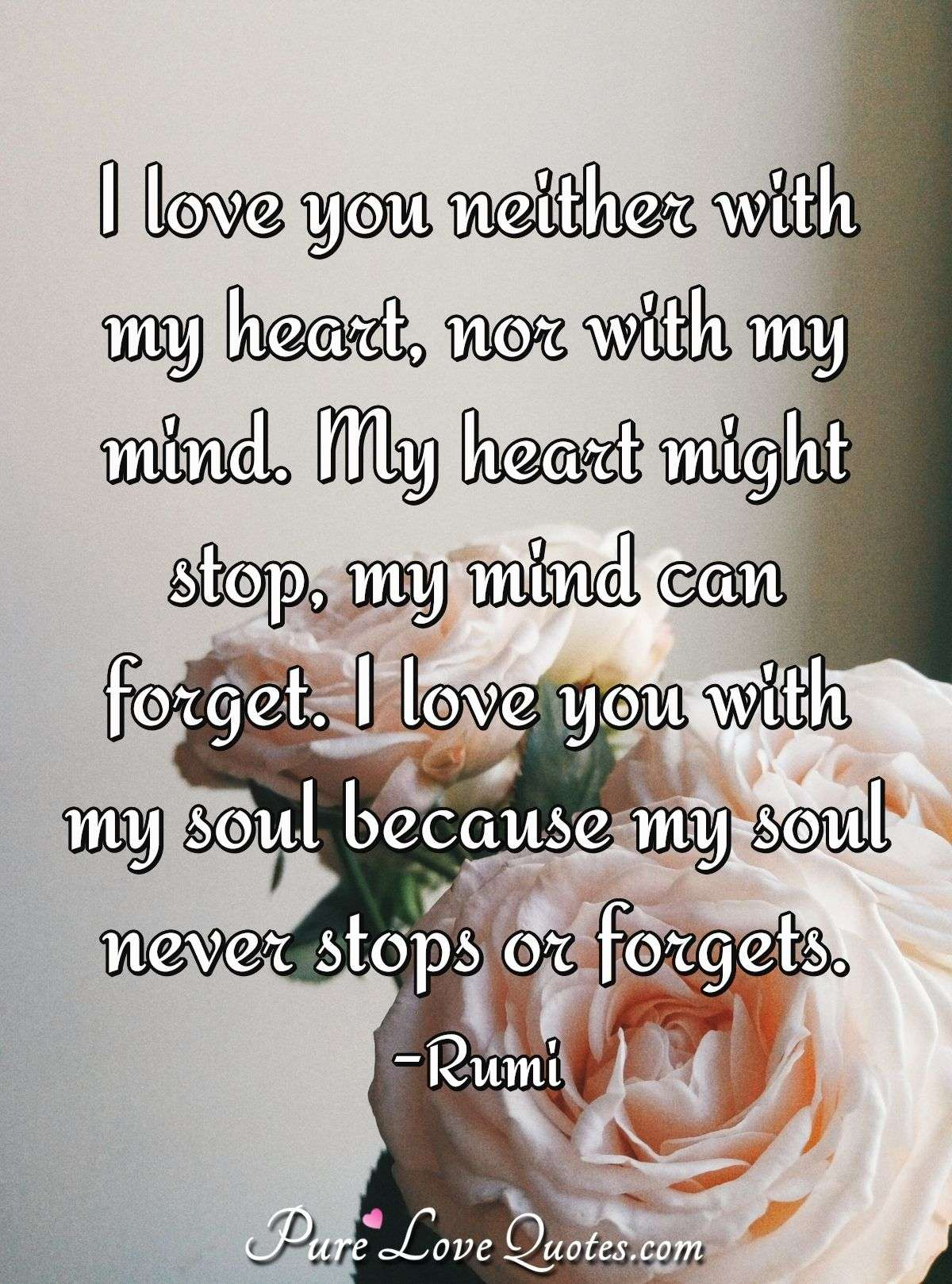 I love you neither with my heart, nor with my mind. My heart might stop, my mind can forget. I love you with my soul because my soul never stops or forgets. - Rumi