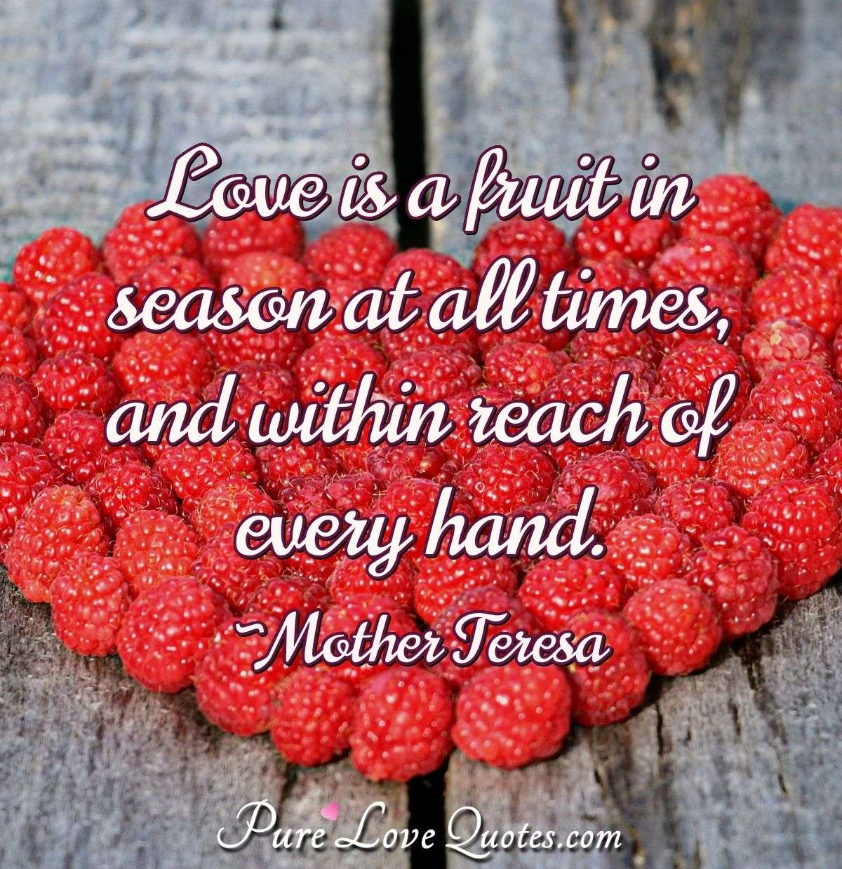 Love is a fruit in season at all times, and within reach of every hand. - Mother Teresa
