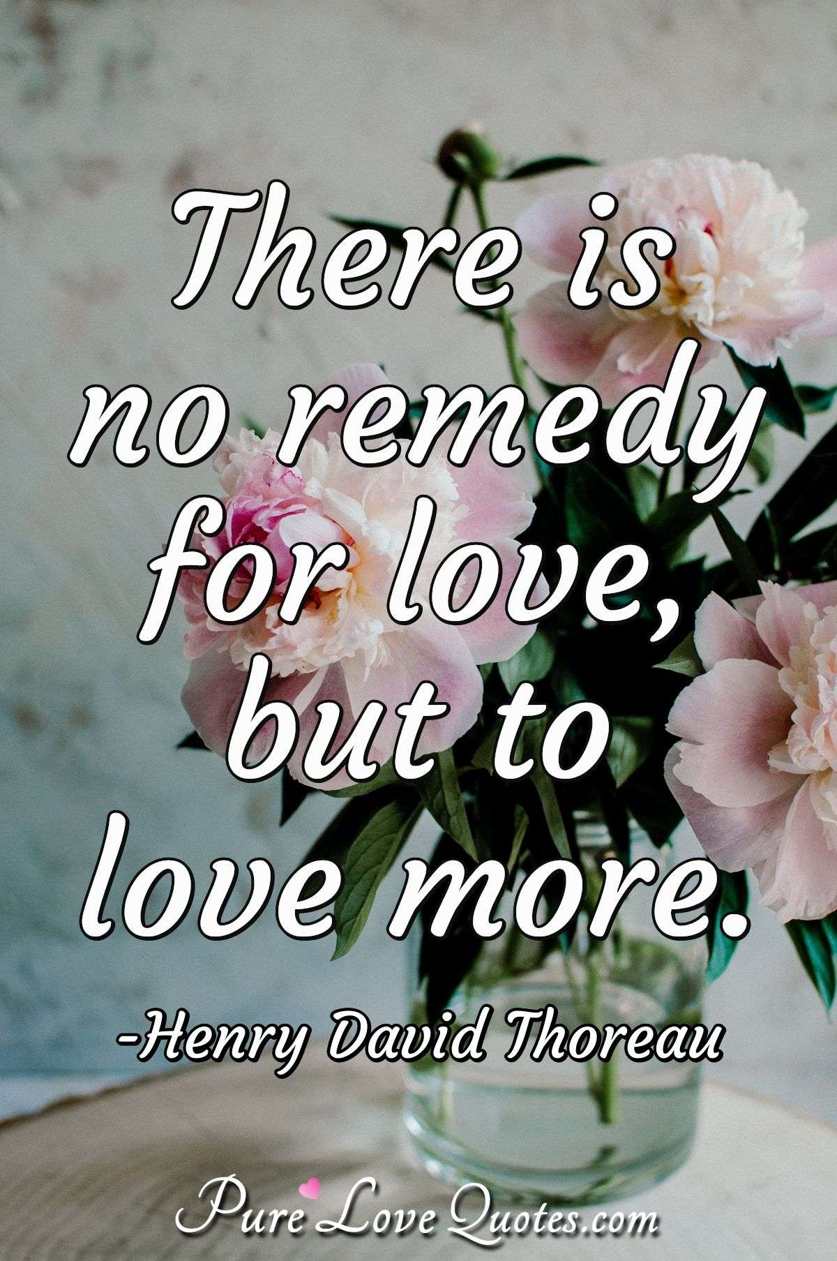 There is no remedy for love, but to love more. - Henry David Thoreau