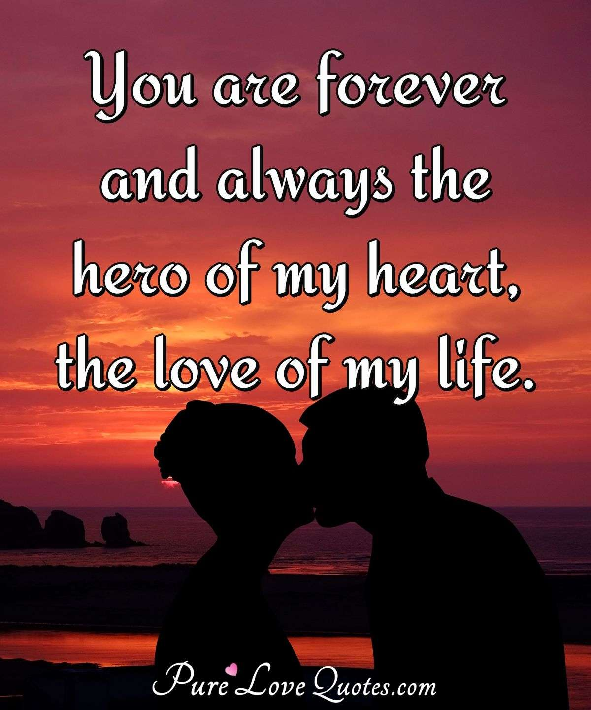 You are forever and always the hero of my heart, the love of my