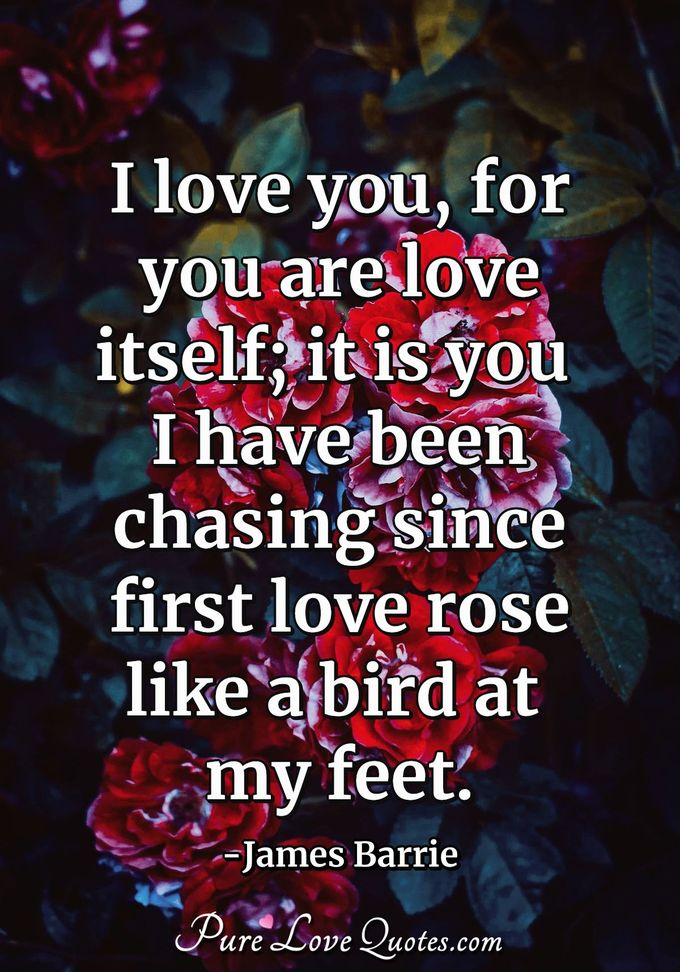 I love you, for you are love itself; it is you I have been chasing since first love rose like a bird at my feet. - James Barrie