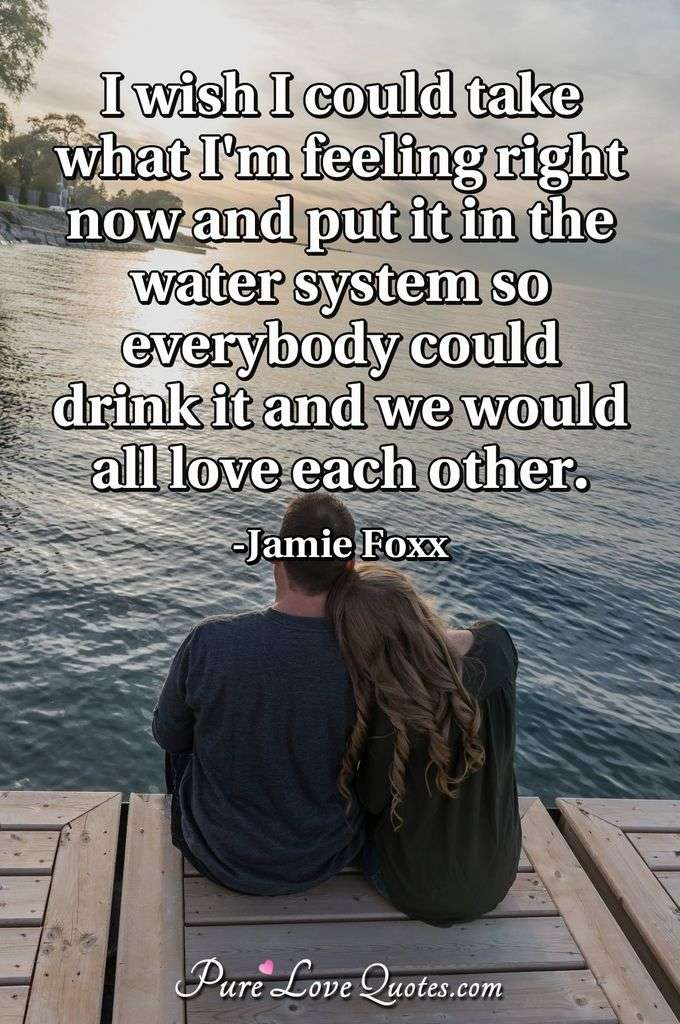 I wish I could take what I'm feeling right now and put it in the water system so everybody could drink it and we would all love each other. - Jamie Foxx