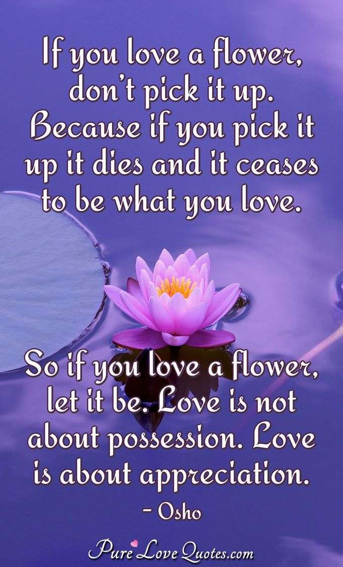 If you love a flower, don't pick it up. Because if you pick it up it dies and it ceases to be what you love. So if you love a flower, let it be. Love is not about possession. Love is about appreciation. - Osho
