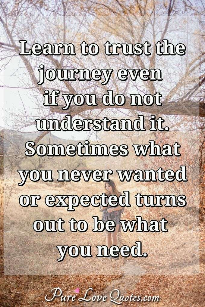 Learn to trust the journey even if you do not understand it. Sometimes what you never wanted or expected turns out to be what you need. - Anonymous