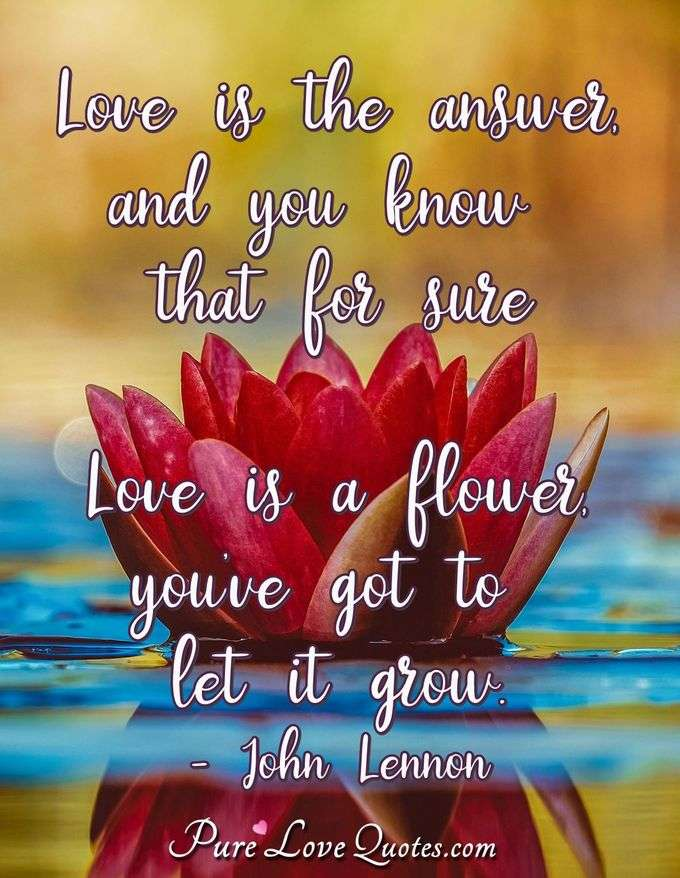 Love is the answer, and you know that for sure; Love is a flower, you've got to let it grow. - John Lennon