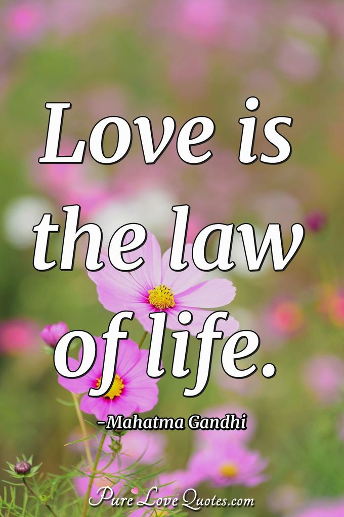 Love is the law of life. - Mahatma Gandhi