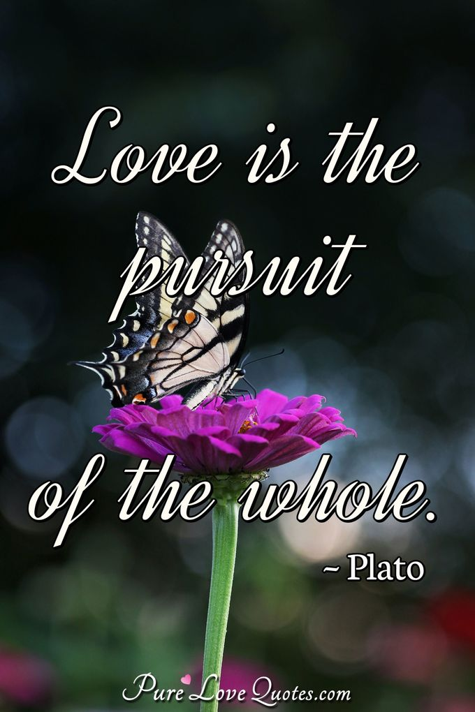 Love is the pursuit of the whole. - Plato