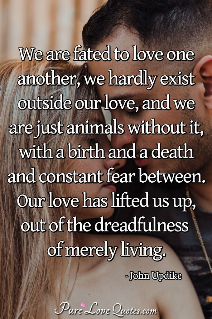 We are fated to love one another, we hardly exist outside our love, and we are just animals without it, with a birth and a death and constant fear between. Our love has lifted us up, out of the dreadfulness of merely living. - John Updike