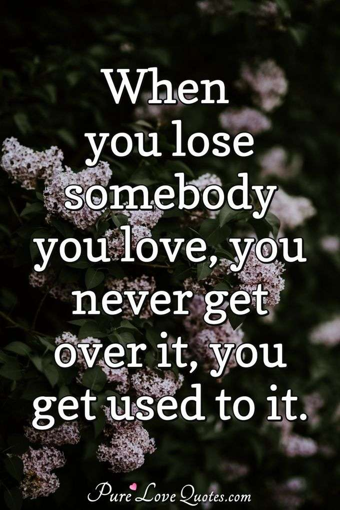 When you lose somebody you love, you never get over it, you get used to it. - Anonymous