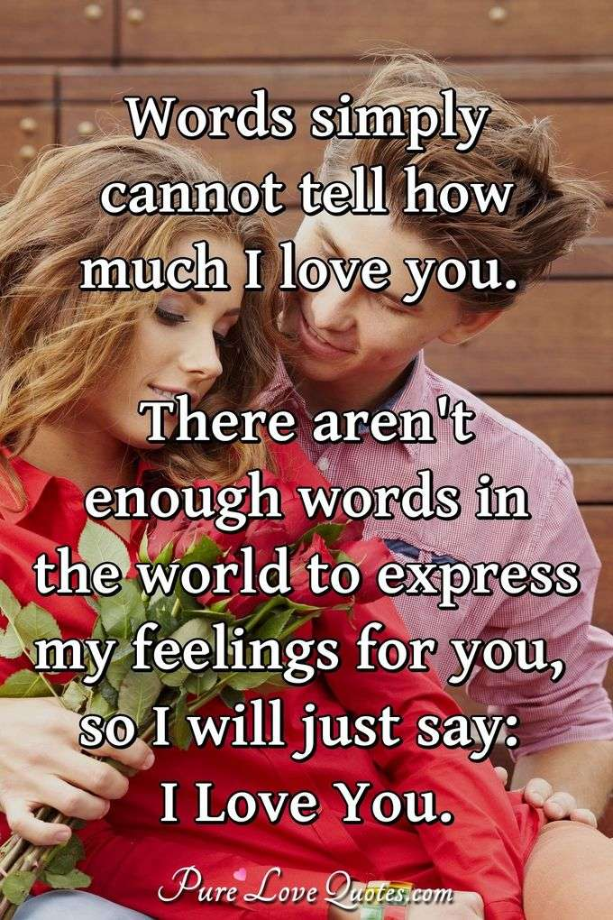 Words simply cannot tell how much I love you. There aren't enough words in the world to express my feelings for you, so I will just say: I Love You. - Anonymous