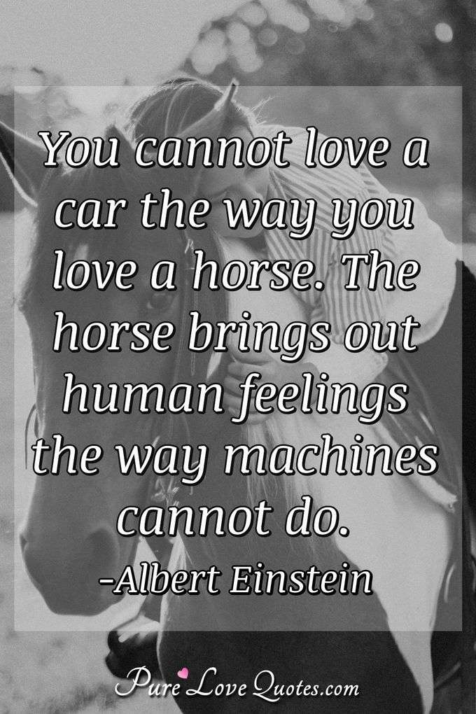 You cannot love a car the way you love a horse. The horse brings out human feelings the way machines cannot do.