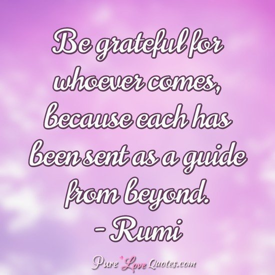 Be grateful for whoever comes, because each has been sent as a guide from beyond. - Rumi