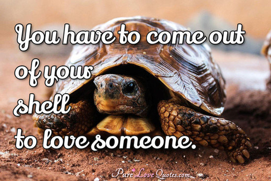 You have to come out of your shell to love someone.