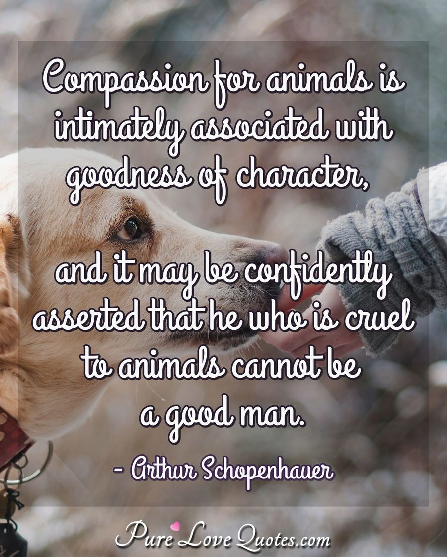 Compassion for animals is intimately associated with ...