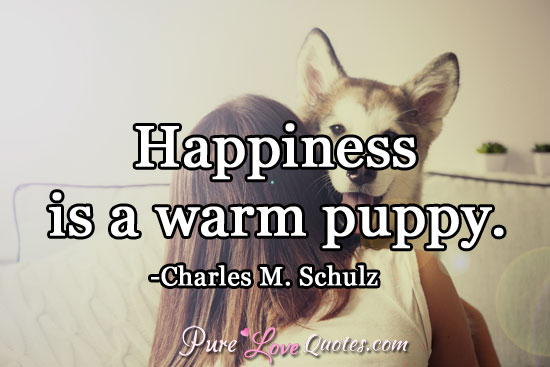 Happiness is a warm puppy.