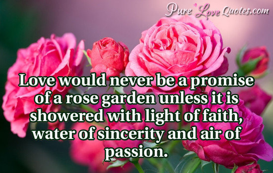 Love would never be a promise of a rose garden unless it is showered with light of faith, water of sincerity and air of passion.