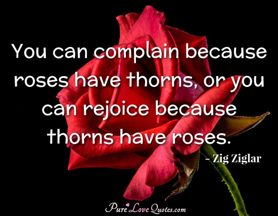 You can complain because roses have thorns, or you can rejoice because thorns have roses.
