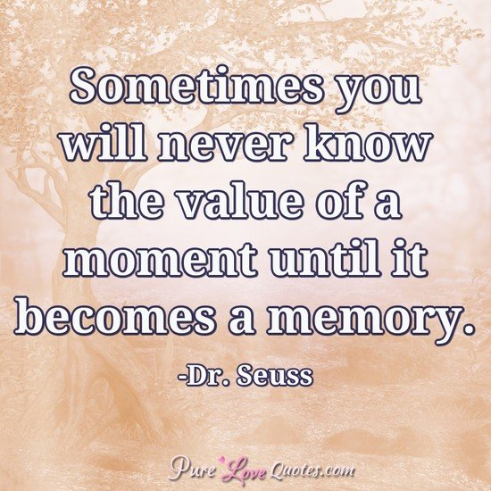Dr Seuss Love Quotes Fair Drseuss Love Quotes  Purelovequotes